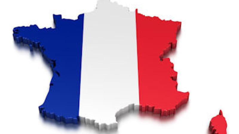 Opfriscursus Frans
