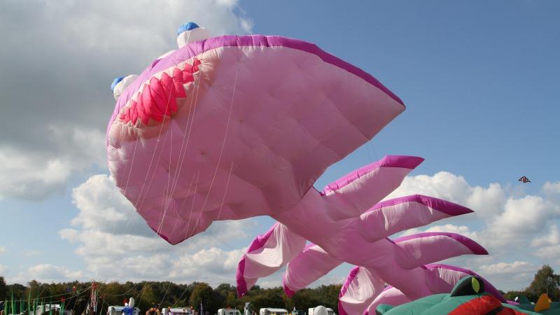 5e internationale Vliegerfeest Dinkelland