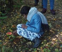 Paddenstoelenexcursie IVN (Ausflug in die Pilze)