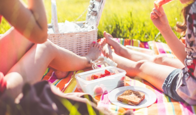 Die schönsten Picknickplätze in Twente