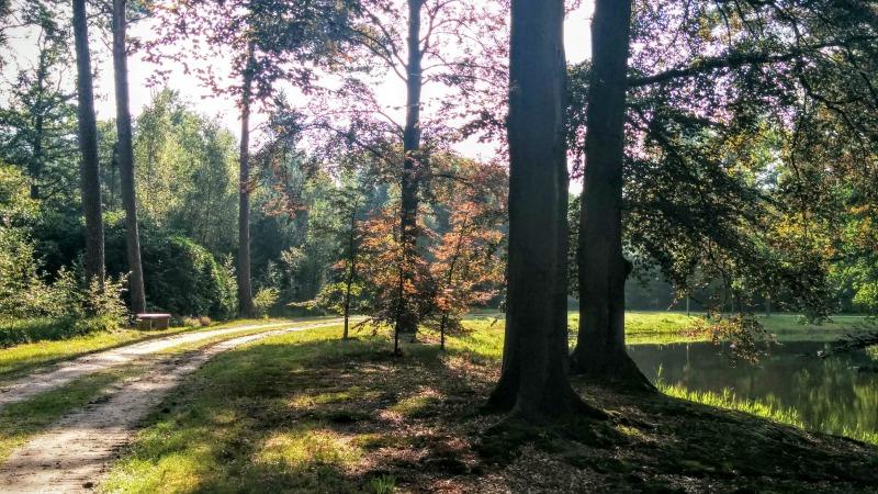 Natuurreservaat de Breeriet