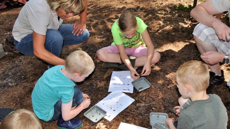 Nature experience voor kids