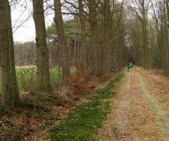 Spaziergang durch die Natur