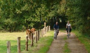 Arrangement: Belevingstocht op de fiets