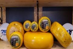 Boerderijwinkel en kaasmakerij Zunakaas