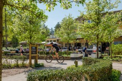 Arrangement Mountainbike Mania Landgoed de Uitkijk
