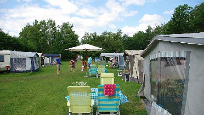 Mini-camping De Paardebloem