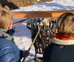 Scharrelkids-doedag Winter