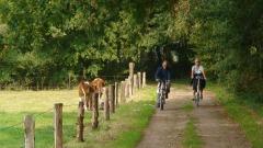 Overzicht fietstochten VVV De Lutte-Losser-Beuningen