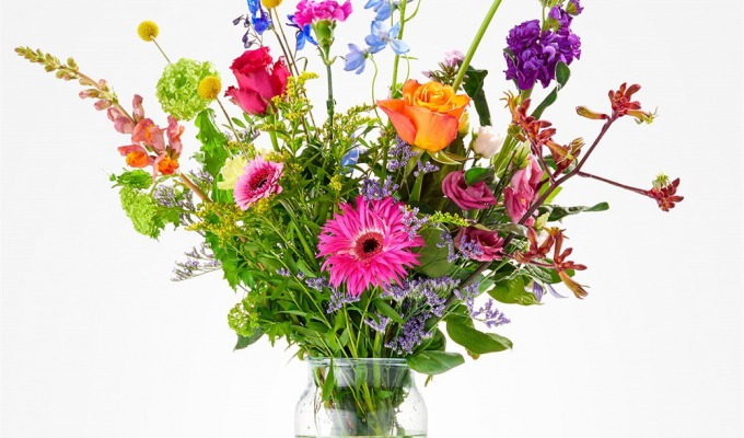 Haal het voorjaar in huis of naar je tuin met de mooiste bloemen