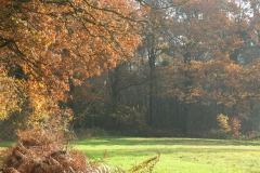 Natuurgebied Boerskotten