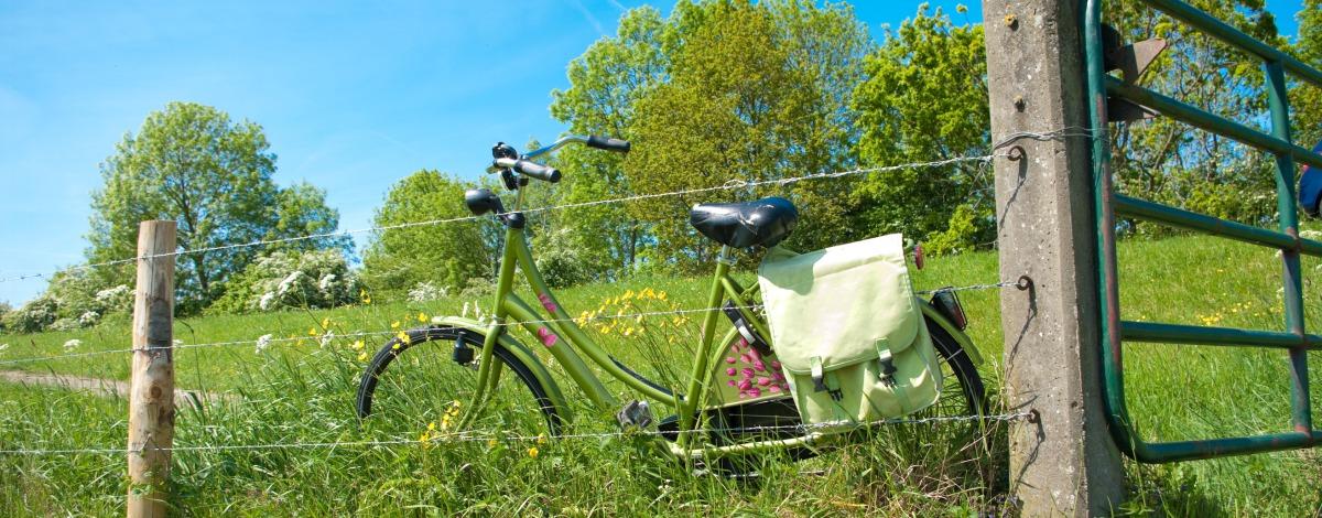 Onze fietsarrangementen