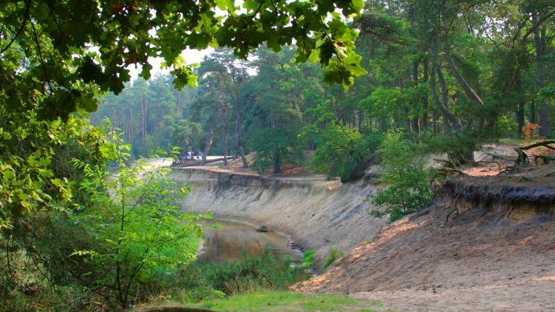 Natuurkampeerplaats De Kunne