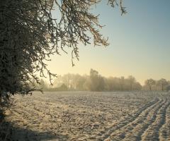 Weiße Winterwanderung