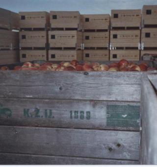 Fruitteeltbedrijf van Vilsteren