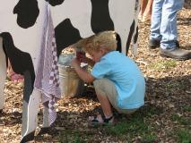 Biologisch melkveebedrijf & ijsboerderij de Meulenhorst