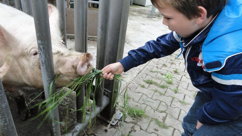Aan 't Zandeinde Kijk Doe en Zorgboerderij