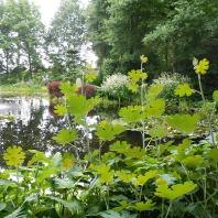 Open Tuinen weekend 2017