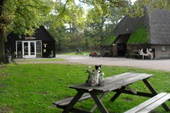 Biologisch melkveebedrijf en ijsboerderij `De Meulenhorst`