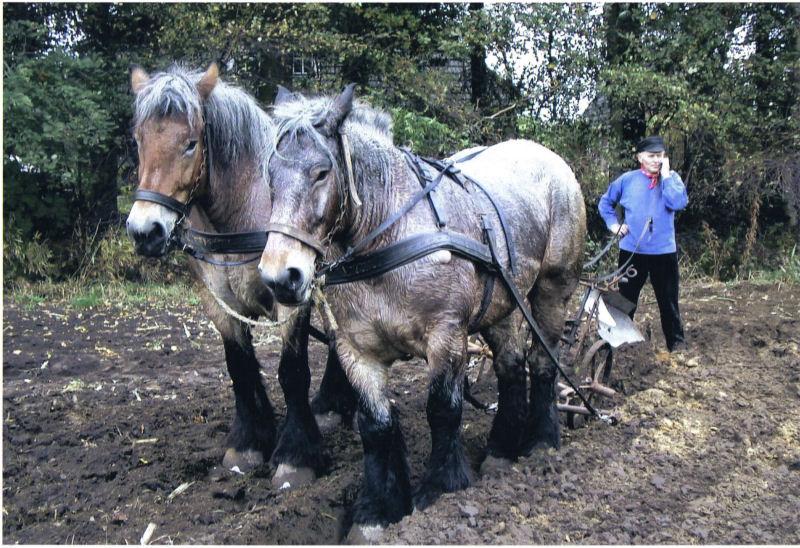 Boer-en-Land-Akkers-bewerken-met-paard