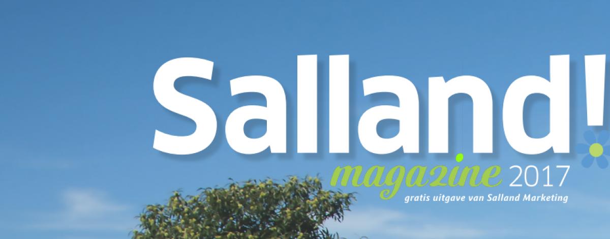 Salland Magazine 2017