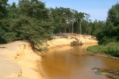 Natuurgebied 't Lutterzand