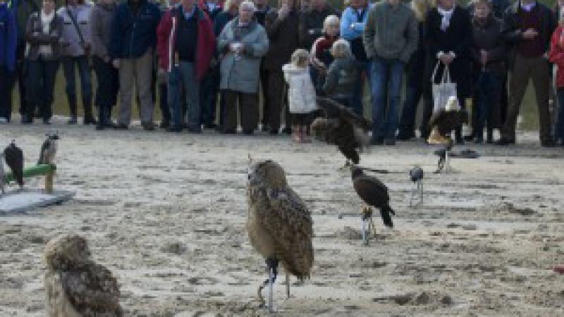 Landgoed Twente Fair