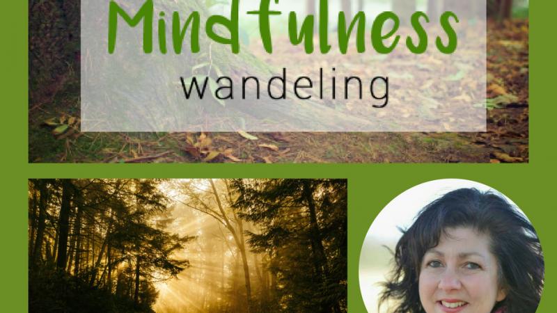 Mindfulness wandelen in de Weerribben