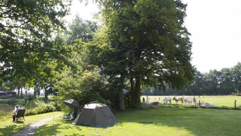 Camping de Twentse Es
