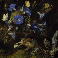 Tentoonstelling De Snuffelaer. Otto Marseus van Schrieck
