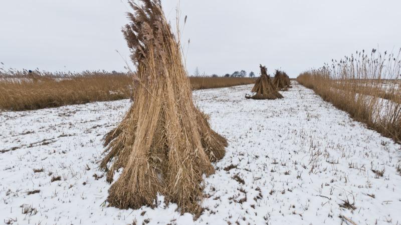 Ontdek het winters ambacht in De Wieden