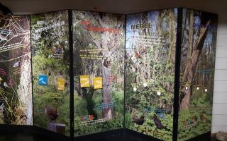 Zangvogels, expositie