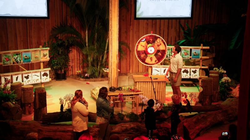 Voorjaarsvakantie: Ontdek de sterren van de jungle in de Orchideeën Hoeve