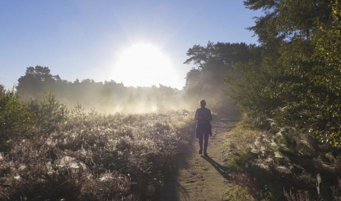 Een Twents Blokje Om: 300 kilometer aan onmeunig veel wandelplezier.