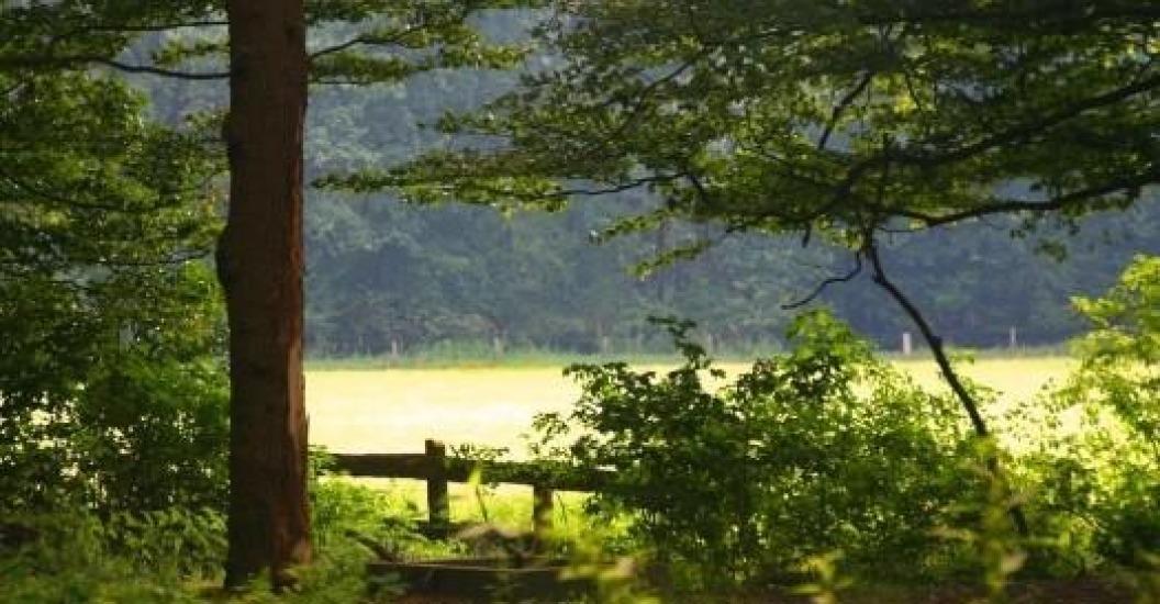 Mensen vormen landschap