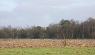 Hekk'npad Nieuw Heeten 6 km