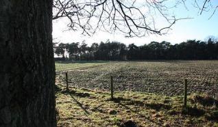 Hekk'npad Nieuw Heeten 9 km