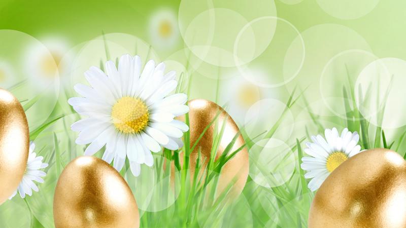 Citaten Pasen Fb : Gouden ei bij t trefhuus in overdinkel apr de