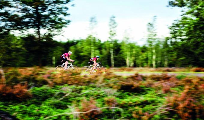 Dit zijn de favoriete natuurgebieden in Twente van boswachter Ine Nijveld