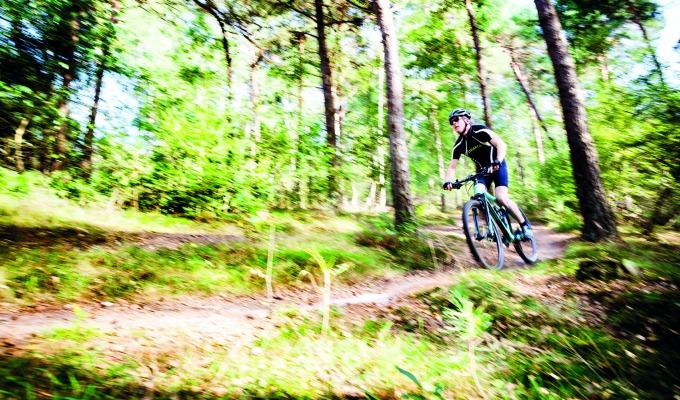 8 tips over het Twents Reggedal en Nationaal Park De Sallandse Heuvelrug