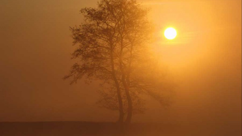 Dag zon, hallo maan
