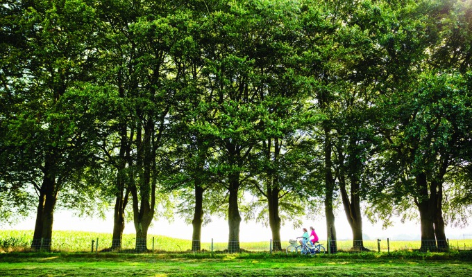 Cycling in Twente: a route through a leafy landscape by country estate Twickel.