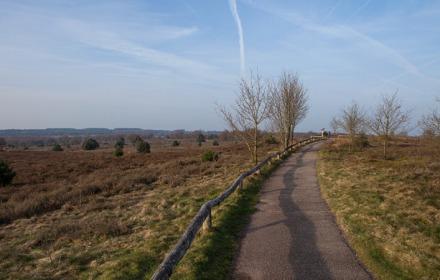 Dagje stappen over de Sallandse Heuvelrug