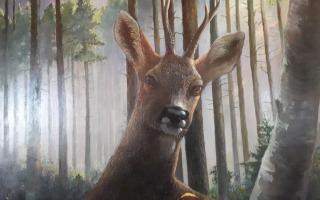 Natuurschilderijen van Henk de Jong