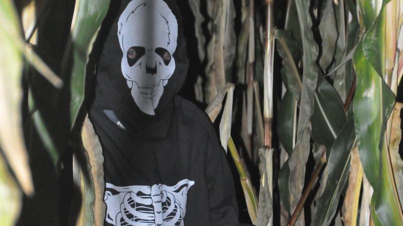 Spannende Spooktochten in het Maisdoolhof