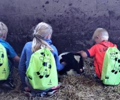 Rondleidingen op de boerderij