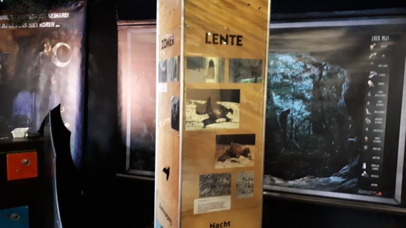 Vleermuizen, en expositie over een bijzonder dier!