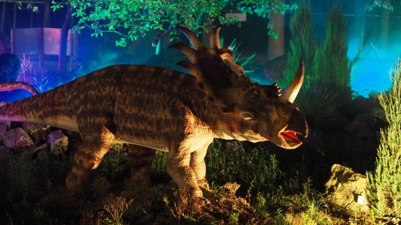 Dino's in het donker