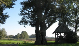 Dorpsommetje Tubbergen: Baasdam - Herinckhave