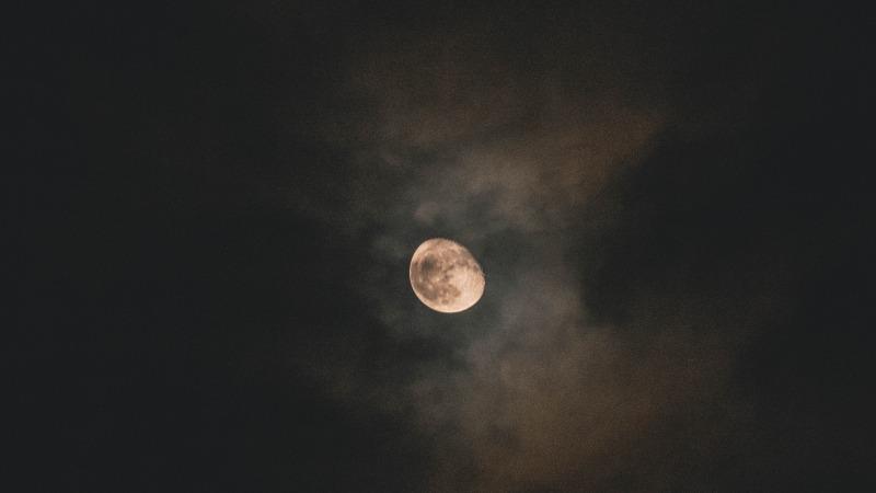 Nacht van de Nacht in het Springendal